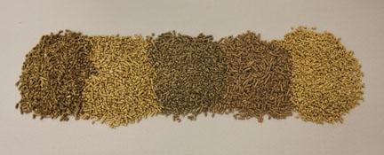 Quale pellet scegliere le marche miglior pellet - Le migliori stufe a pellet quali sono ...