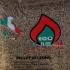 Ecofiamma, dal legno della Toscana