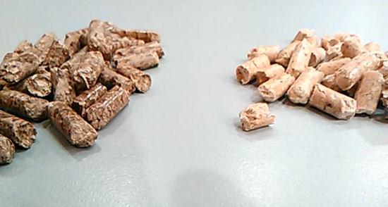 Differenza di colore tra pellet di abete e di faggio